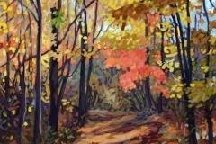 Walford-Rejuventation-Kerncliff-Park-40x30-oil-on-canvas-1700.00