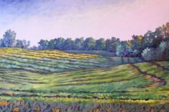 Walford, Rolling Field. 30x60, oil on canvas